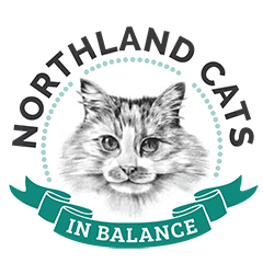 Northland Cats in Balance